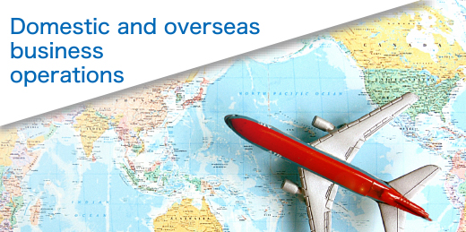 Domestic and overseas business operations